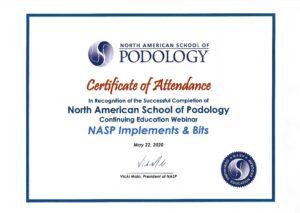 Katalin Keddie - NASP Implements and Bits