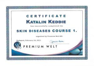 Katalin Keddie - Skin Diseases Course - 1